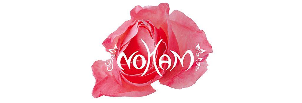 Visuel Partenaire - Logo Noham